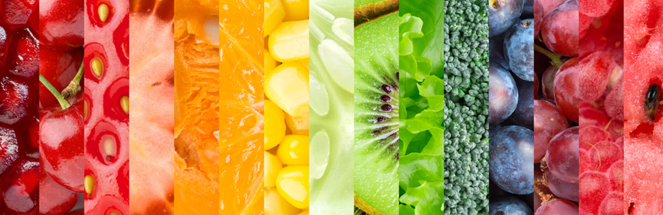 Rainbow Food Header