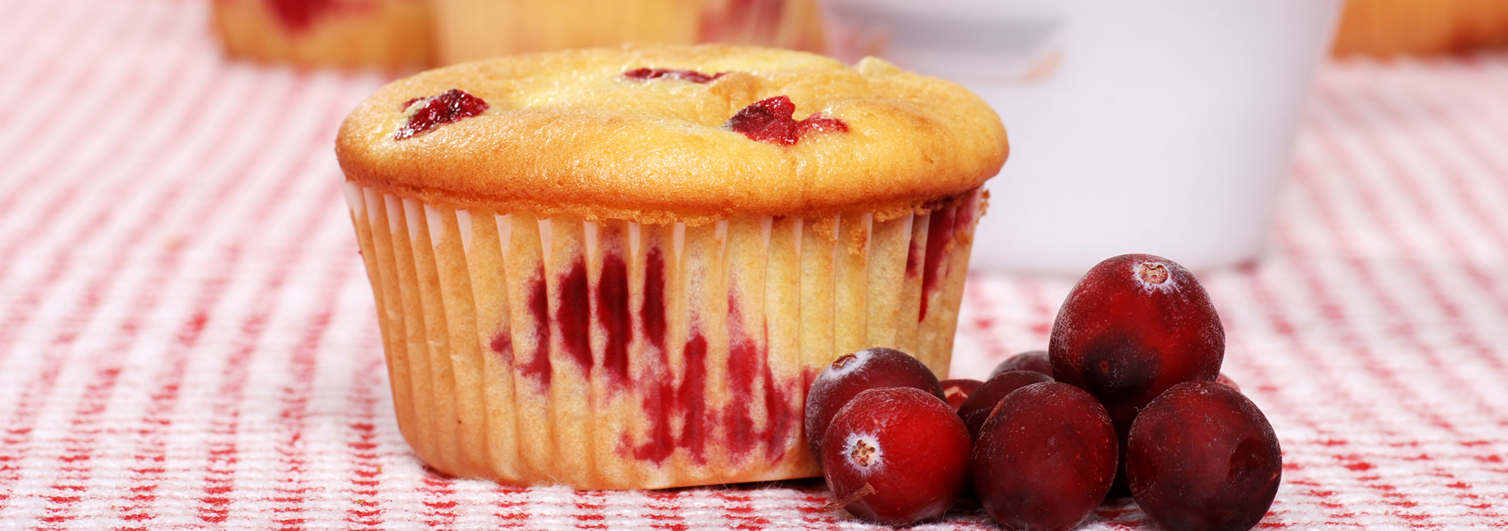 Lemon Cranberry Cupcakes